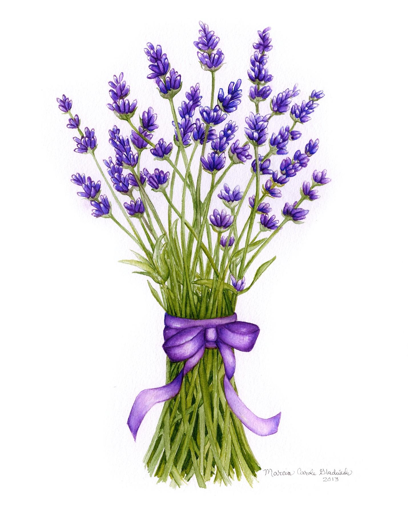 Lavender Prints Arrive Monday