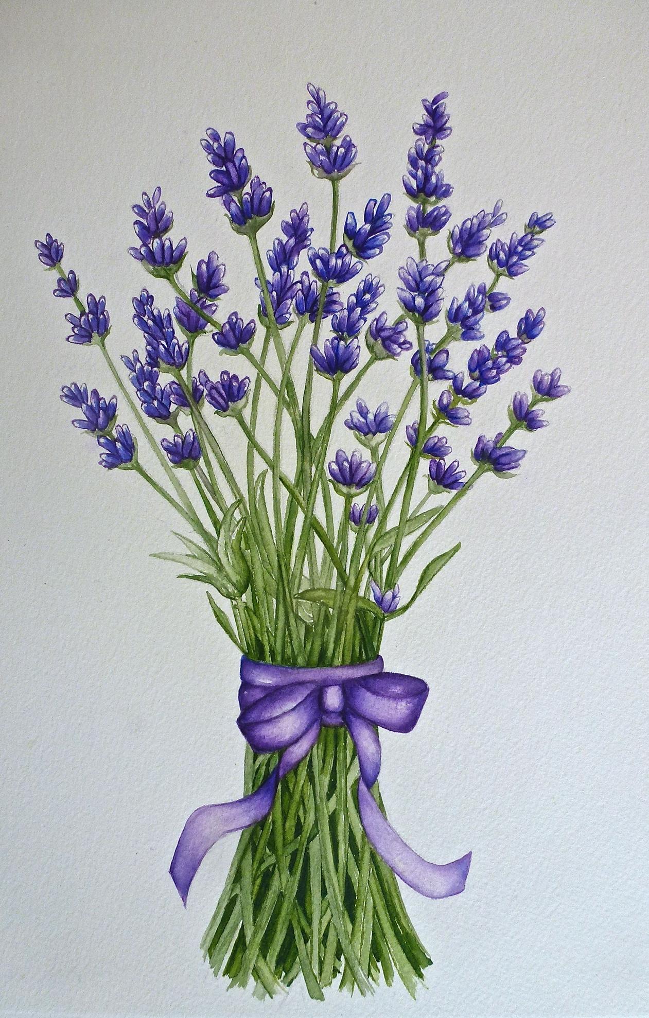 Ah, Summer Lavender!
