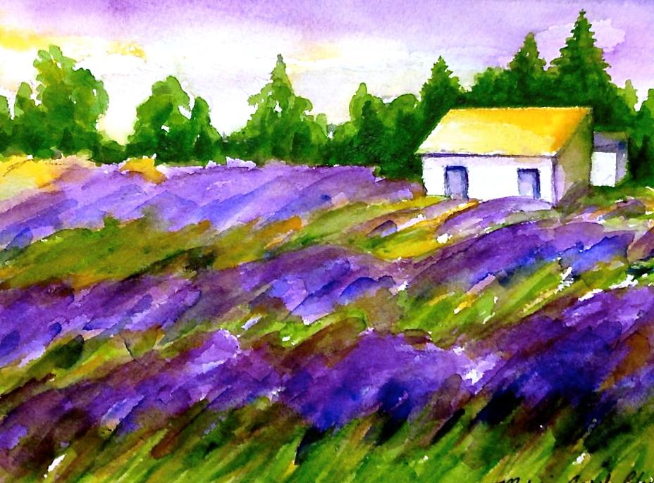 Lavender Fields In Winter