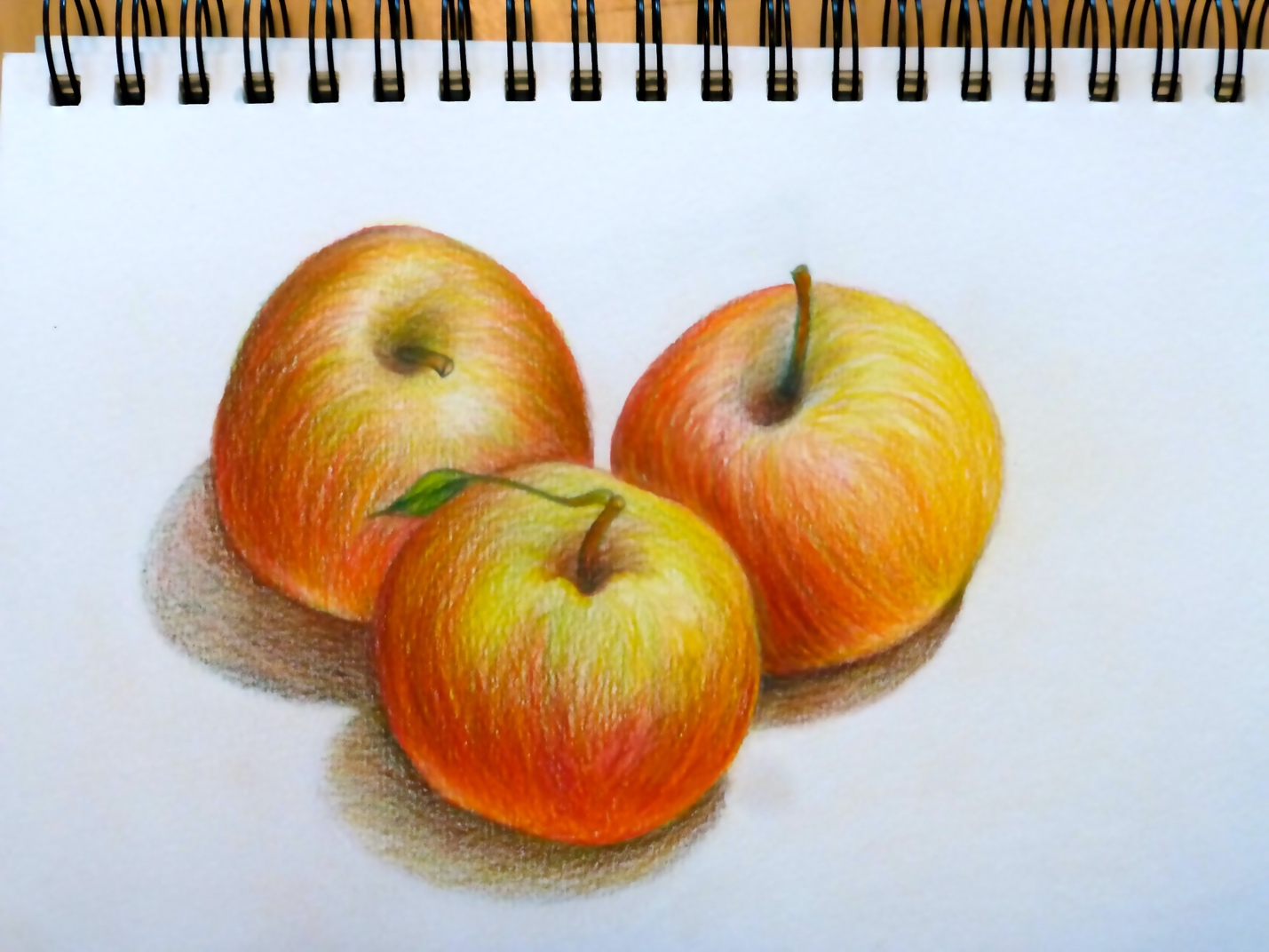 Sketchbook Skool – Colored Pencils